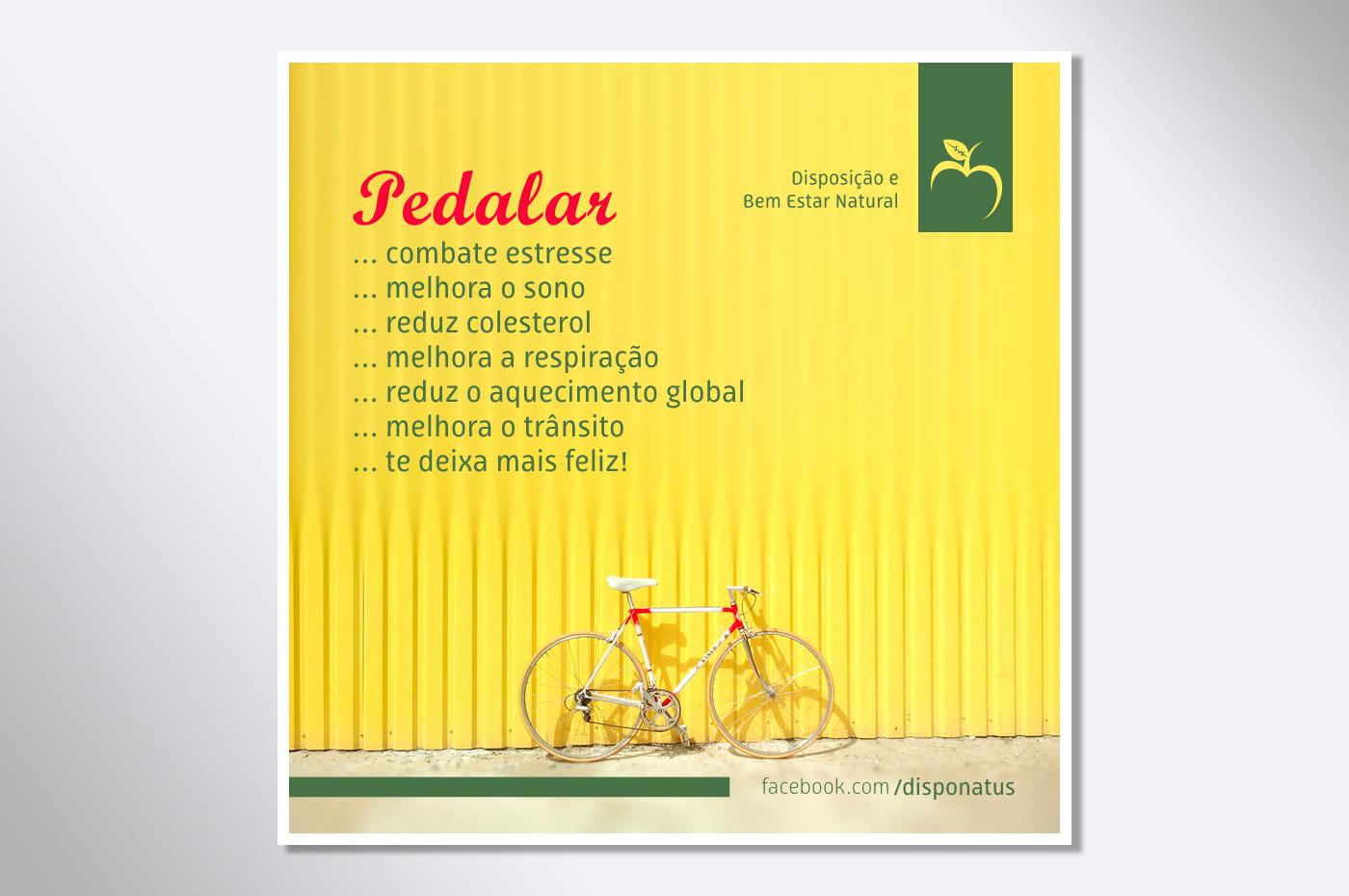 https://www.rafaeloliveira.com/portfolio/disponatus